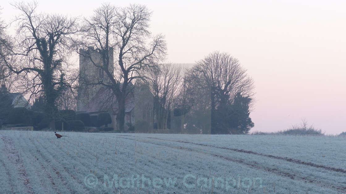 """Borley Church, Essex and Pheasant"" stock image"